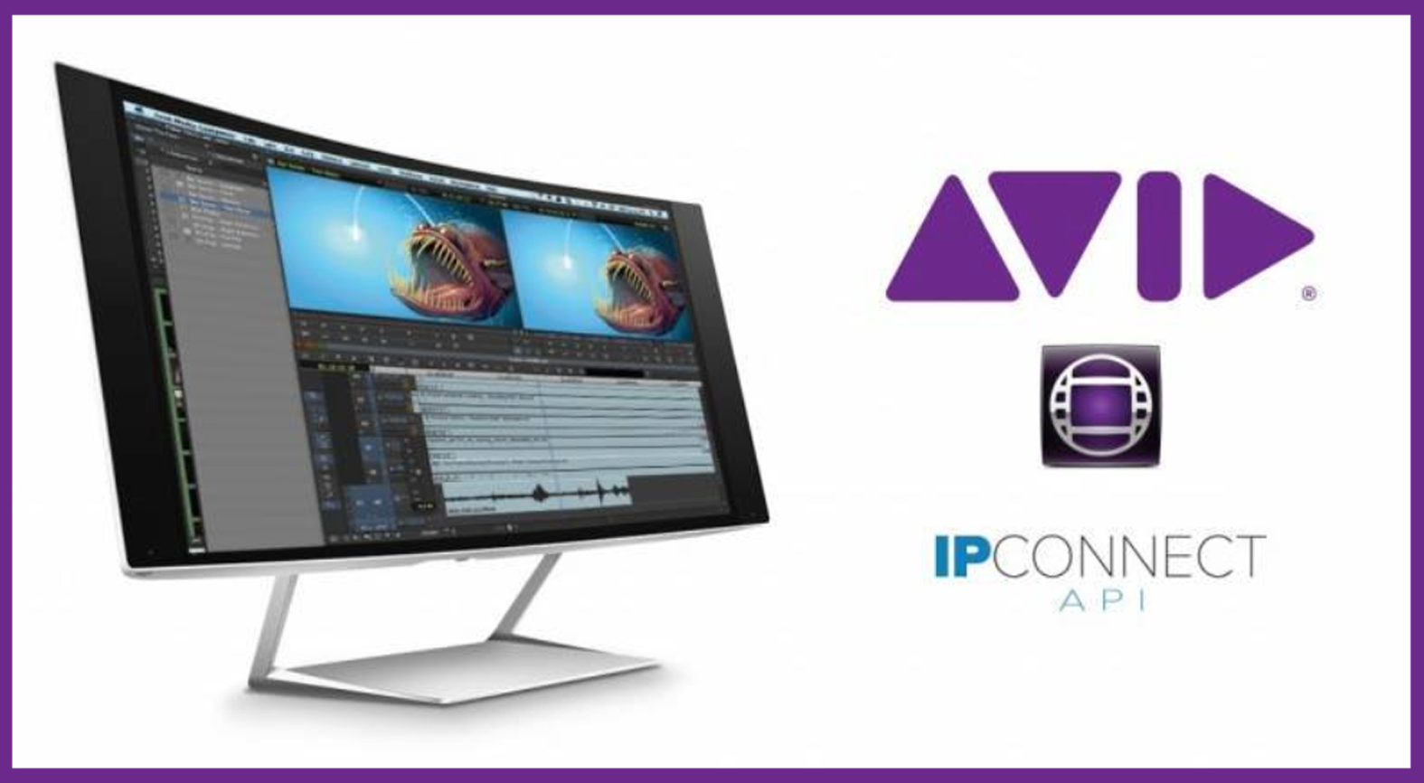 Bluefish444_Video Cards_Add SMPTE 2022 IP Capture To AVID Media Composer