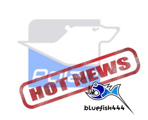 hot-news-polar-logo-and-bluefish444