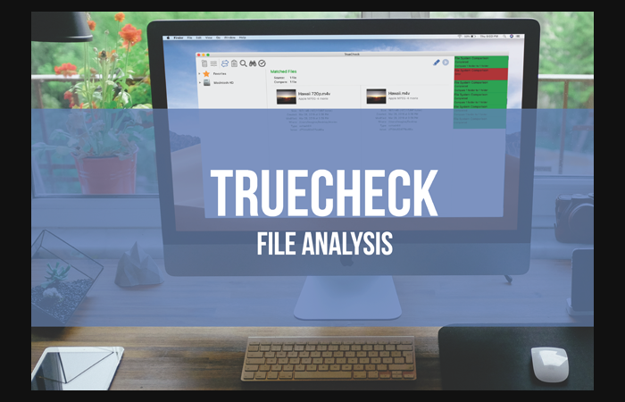 Imagine Products_TrueCheck_File Analysis Application_Desk Set Up