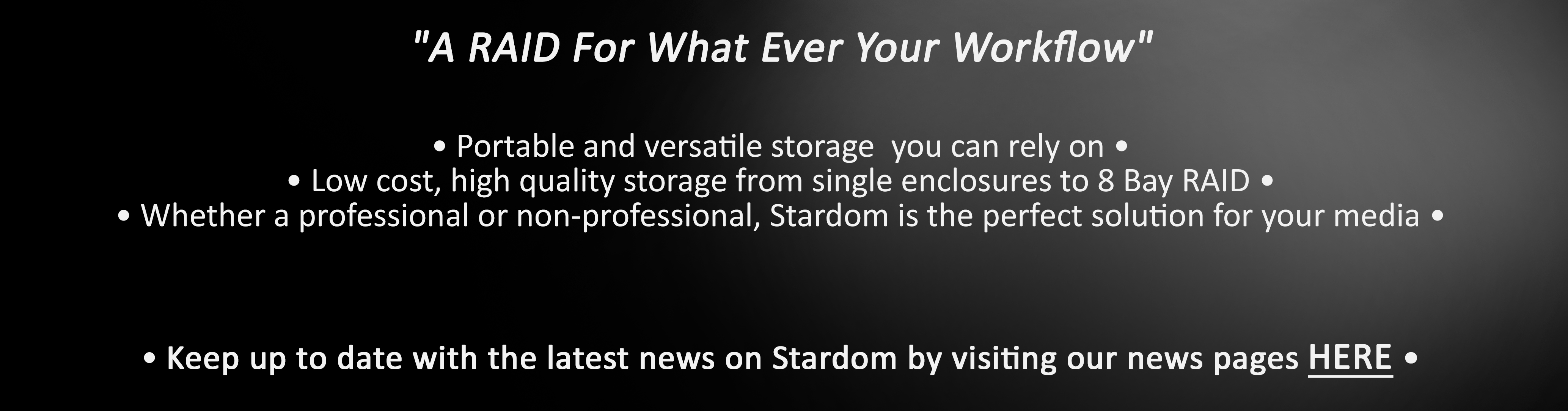 Stardom_Cost Effective RAID Storage_Intro